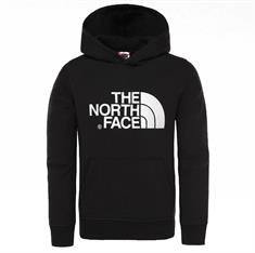NORTH FACE YOUTH DREW PEAK PO HOODIE