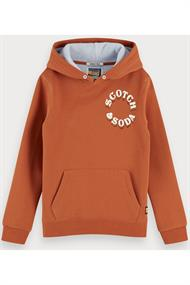 SCOTCH&SODA HOODY IN TWO-TONE QUALITY WITH ARTWORK